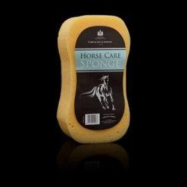 Sponge horse care sponge Carr & Day