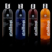 Gallop color black - shampoo 500 ml