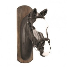 Bridle with leather reins rubberized