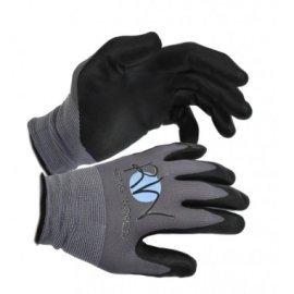 Gloves riding groom